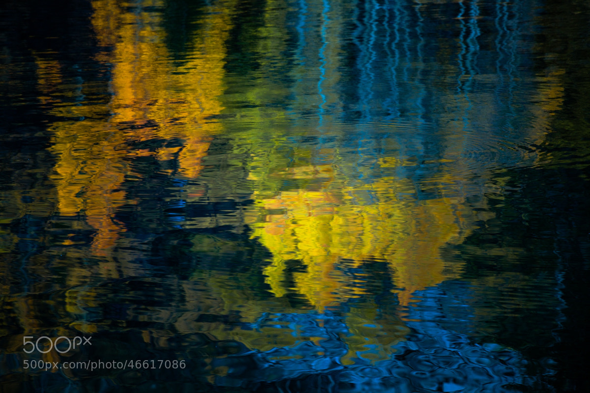 Photograph Reflections of Fall by Shane Lund on 500px