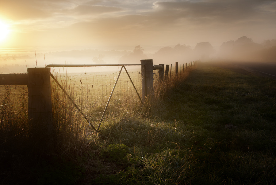 Photograph Through the mist by Nathan Kaso on 500px