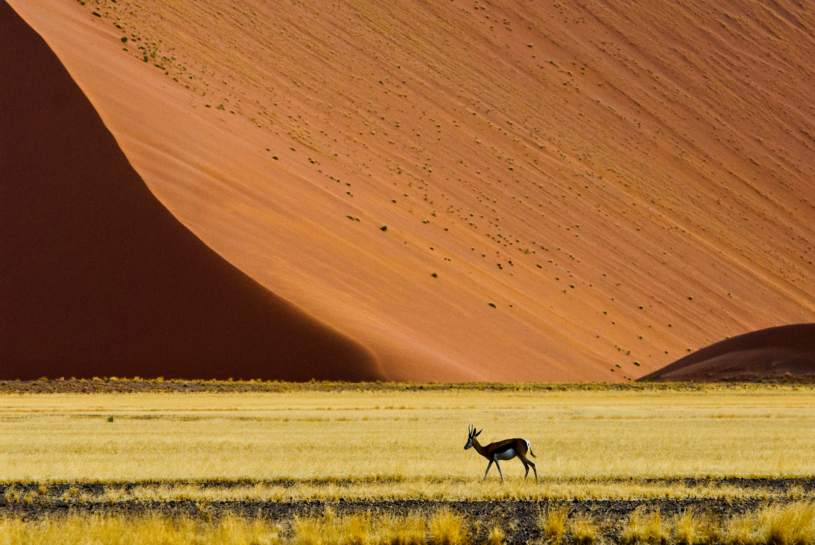 Photograph Alone by Gorazd Golob on 500px