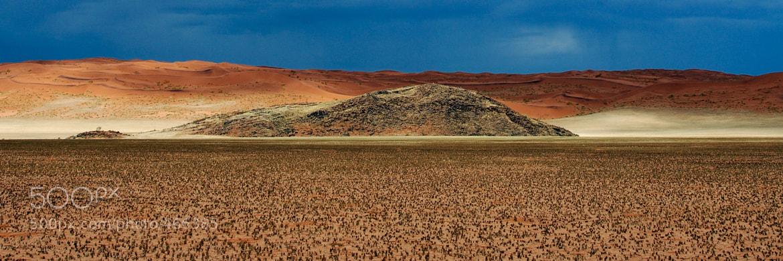 Photograph Namib by Gorazd Golob on 500px