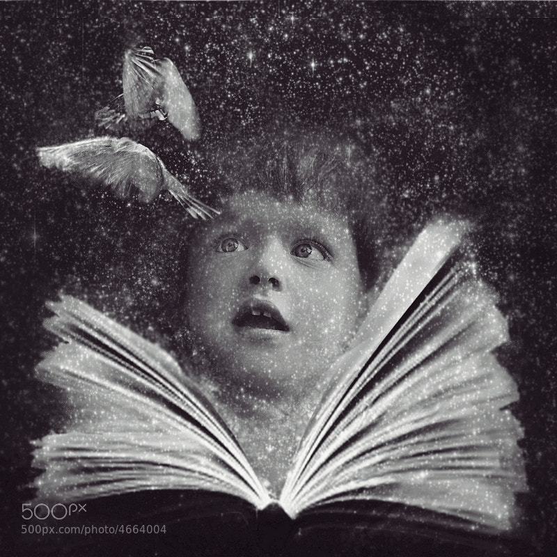 Photograph magic book by Emese-durcka Laki on 500px