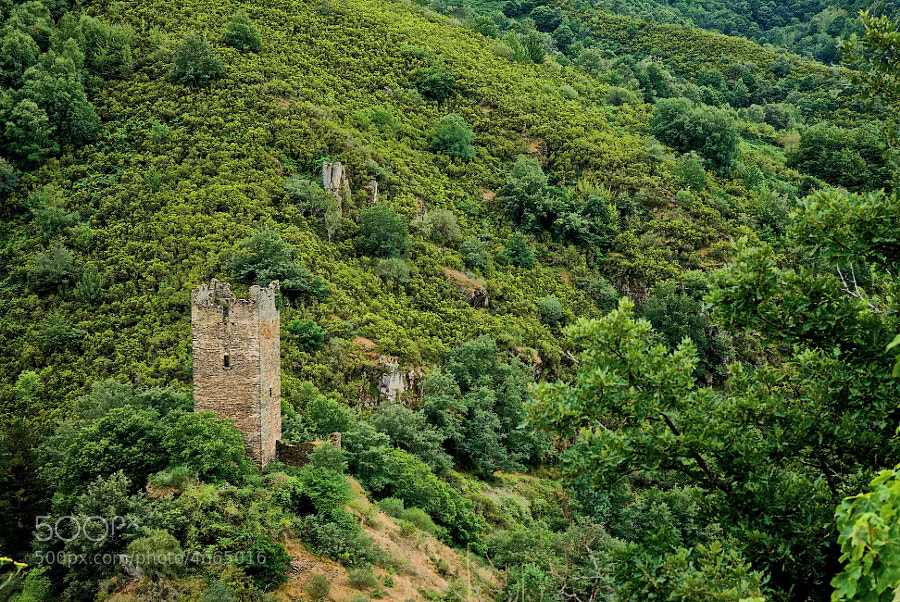 """En Santiago de Doncos, al borde del río Navia, se encuentra la torre de Doncos, casi inaccesible en su montículo bordeado por el río a modo de foso protector. La torre se conoce también como fortaleza de San Agustín y como """"la Grupa"""".  Formaba parte de los sistemas defensivos del Reino de Galicia, junto con los castillos de Doiras y de Valcarce. Se especula del comienzo de su construcción en el final del siglo X o principios del XI. La torre en si es de planta cuadrada y mide alrededor de 18m.   (copiado/pegado de por ahí)"""