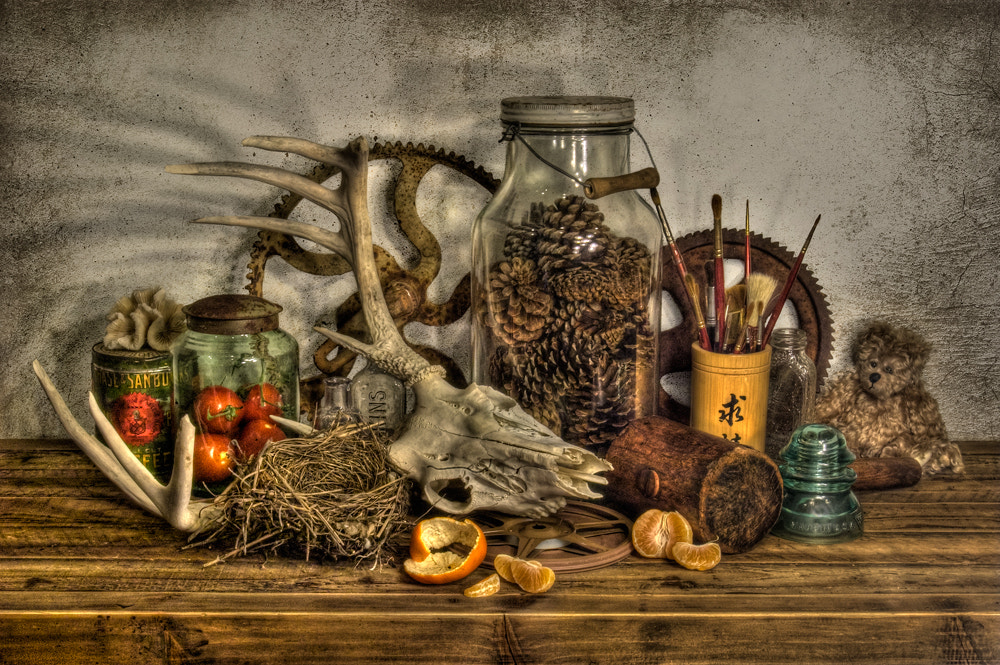 Photograph Still Life #1 by Mark Routt on 500px