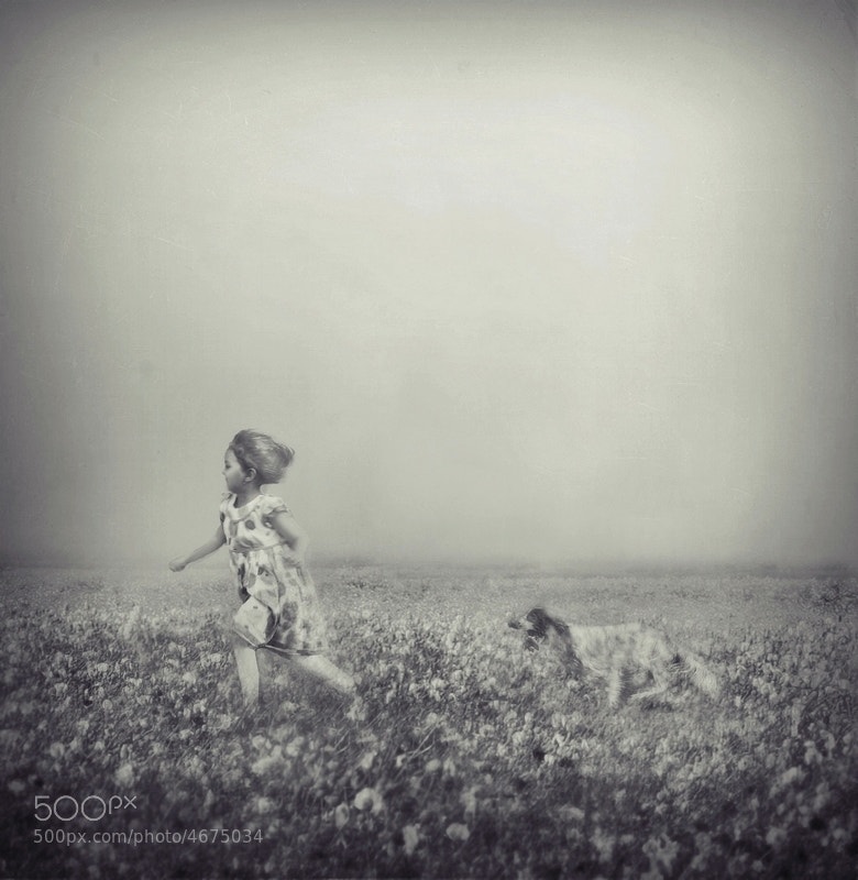 Photograph rush with me by Emese-durcka Laki on 500px
