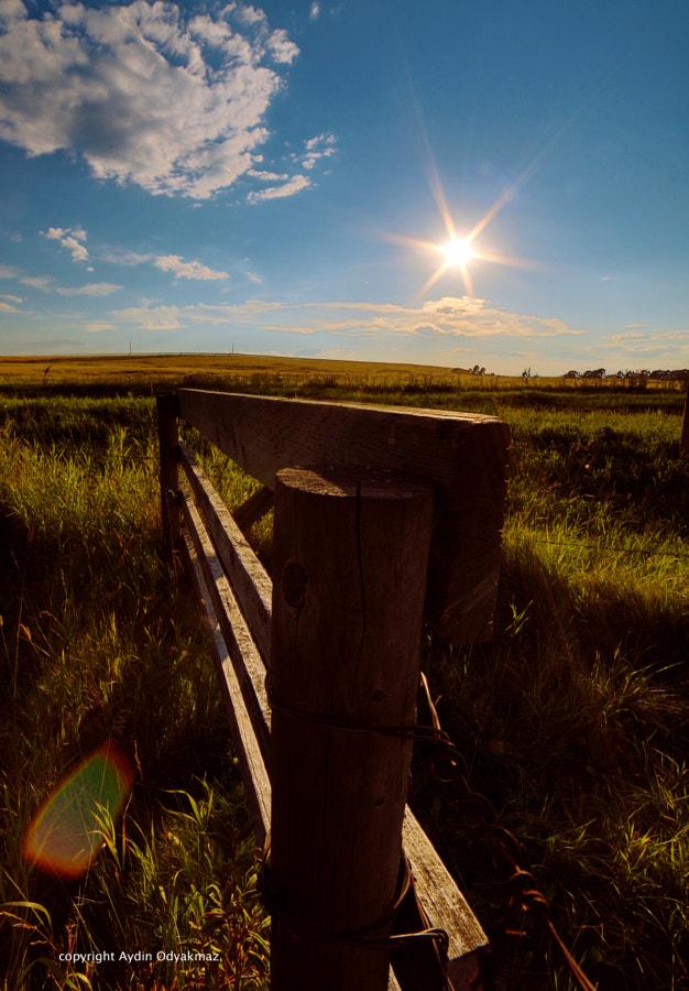 Sundown at the Farm