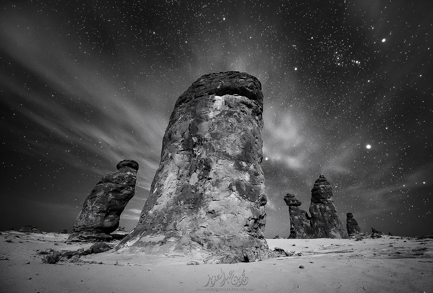 Photograph The kings of the night by Mohammed  Bin Abdulaziz on 500px