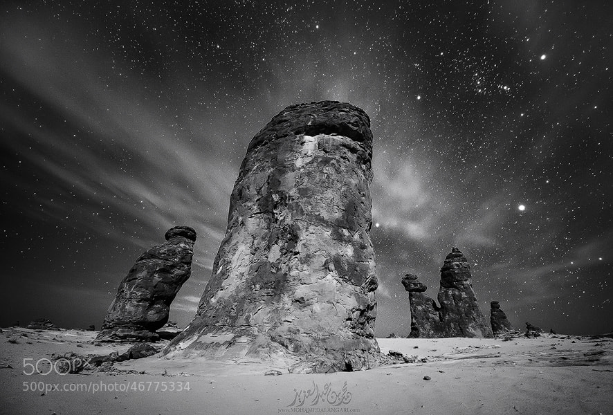 Photograph The kings of the night by Mohammed  ALangari on 500px