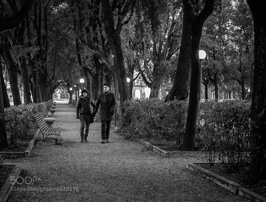 Young couple take an evening stroll in a park