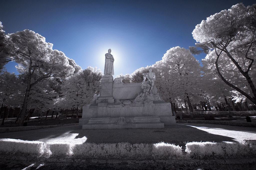 Photograph Infrared_Petrarca monument by Mario Cangelli on 500px