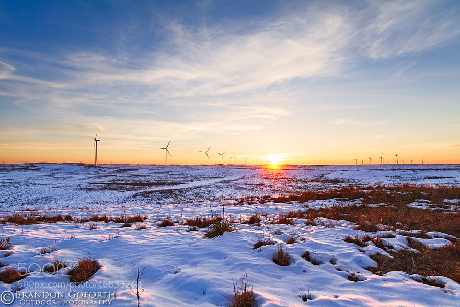Photograph Snowy Sunset by Brandon Goforth on 500px