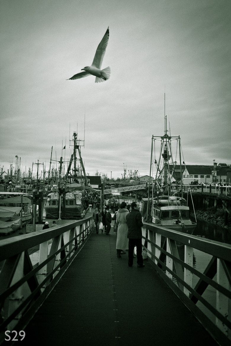 Photograph on the wharf by Mike Vorontsov on 500px