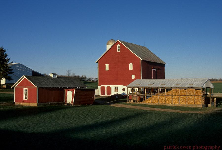 Otto Farm
