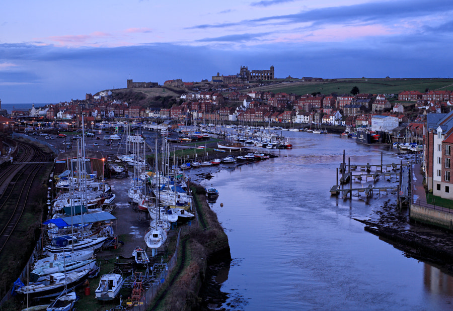 Whitby River View