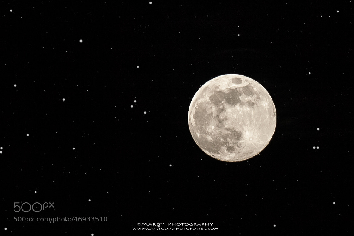 Photograph Happy full moon's day! by Mardy Photography on 500px