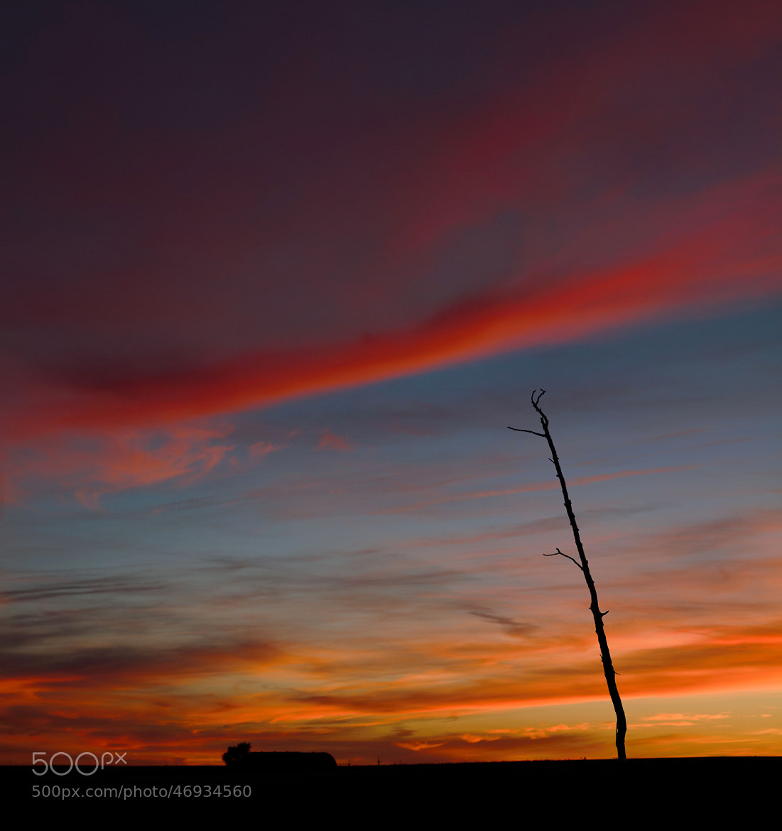 Photograph Days of Heaven by Luis Mariano González on 500px