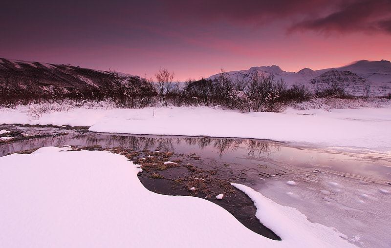 Photograph Pink snow by kanya  hanklang on 500px