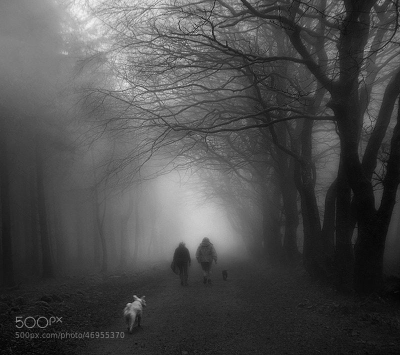 Photograph Stalker by Lukasz Maksymiuk on 500px