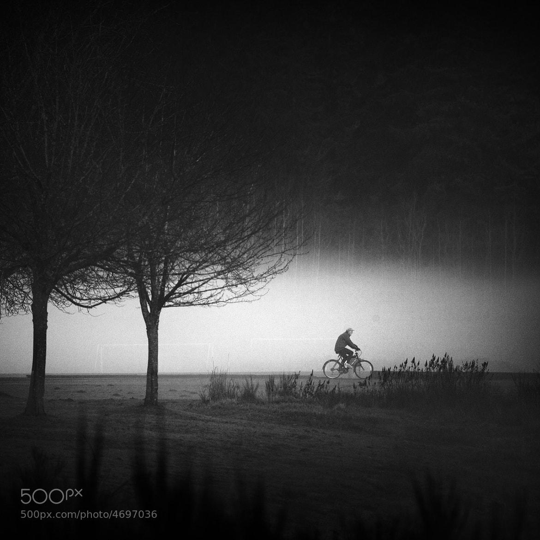 Photograph Marymoor Fog by Sparth (Nicolas Bouvier) on 500px