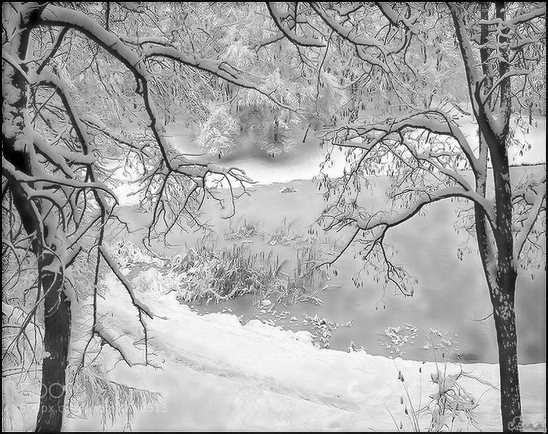 Photograph Winter lake by Alla  Lora on 500px