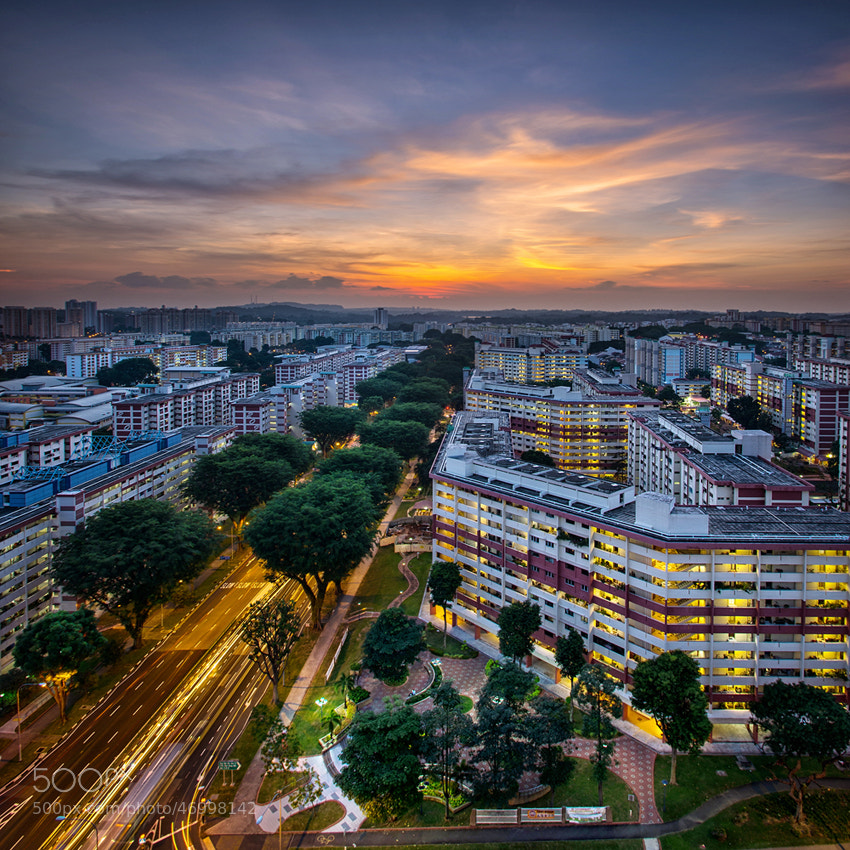 Photograph The Phoenix Rises by WK Cheoh on 500px