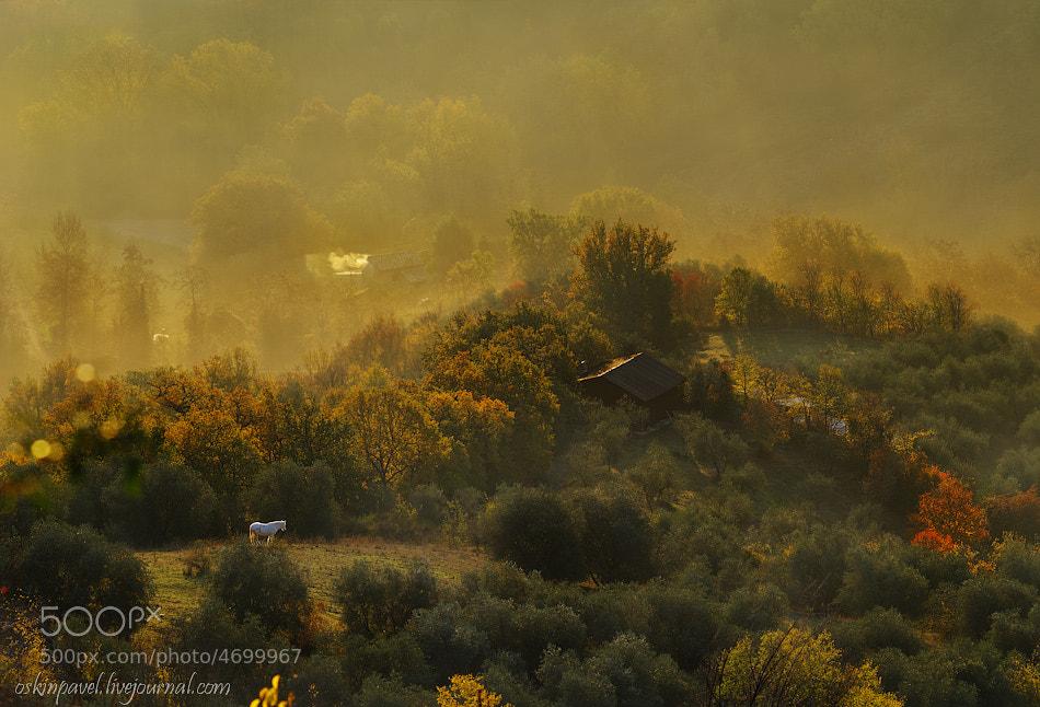 Photograph Civita_8 by Pavel Oskin on 500px