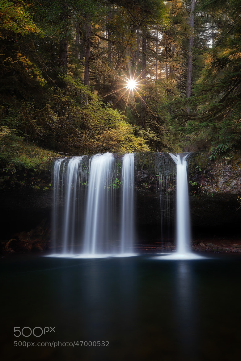 Photograph Promise by Tula Top on 500px