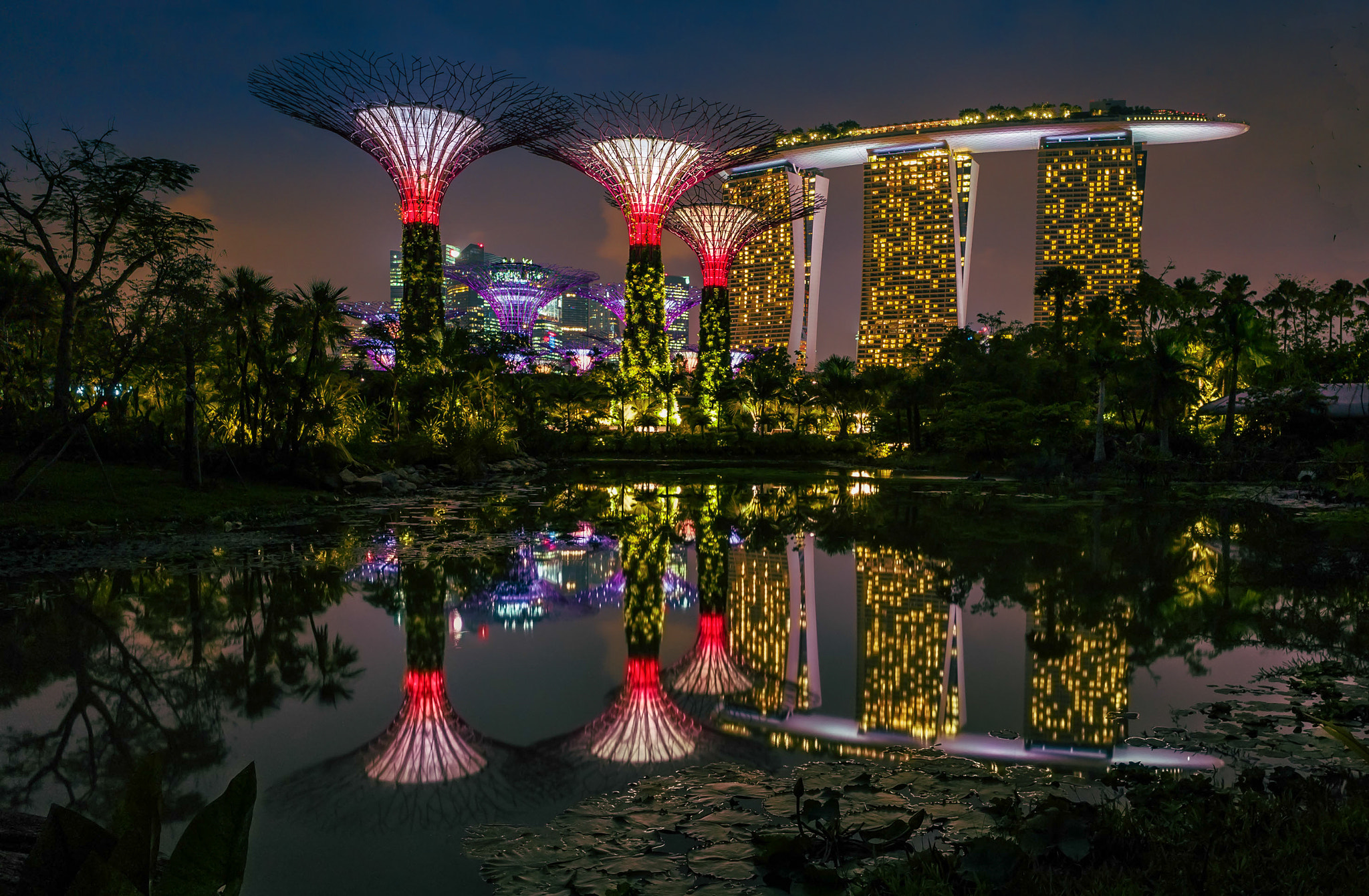 Photograph Gardens by the Bay. by love leica on 500px