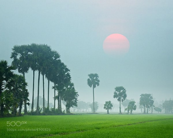 Photograph Country  of An Giang - Vietnam by hoangnamphoto on 500px