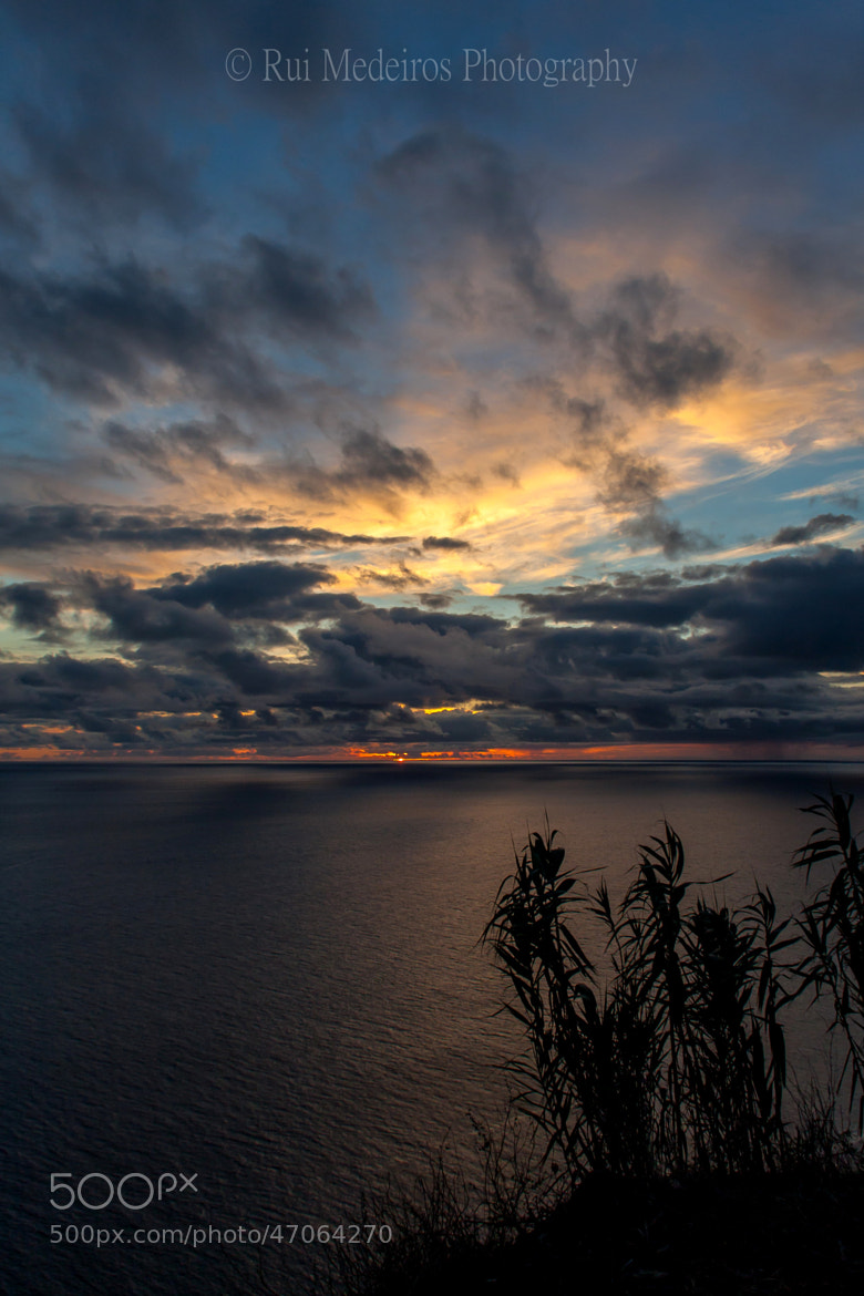 Photograph WORK OF GOD by rui medeiros on 500px