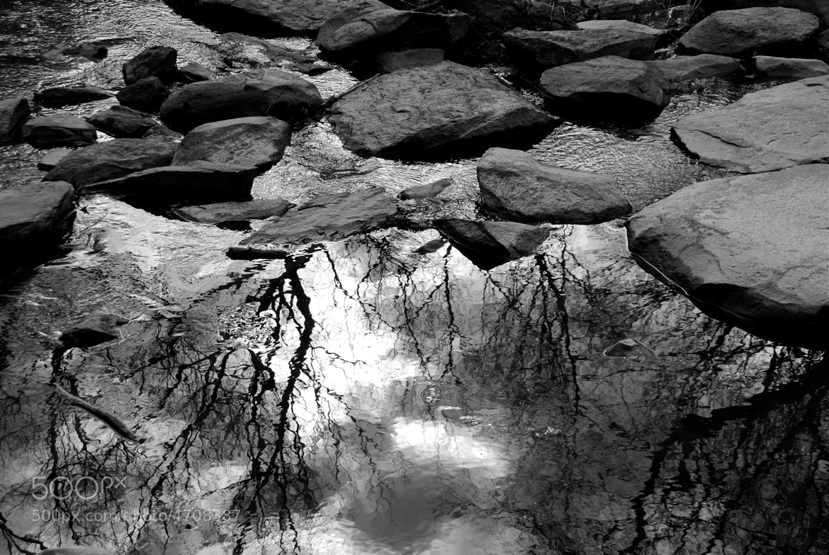 Photograph nc river reflections by ian sauer on 500px
