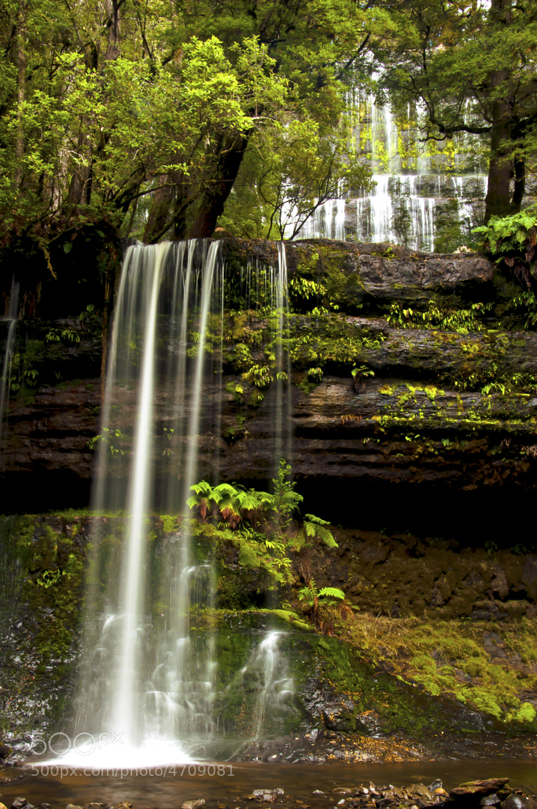 Photograph Russells Falls by Damien Le Prieur on 500px