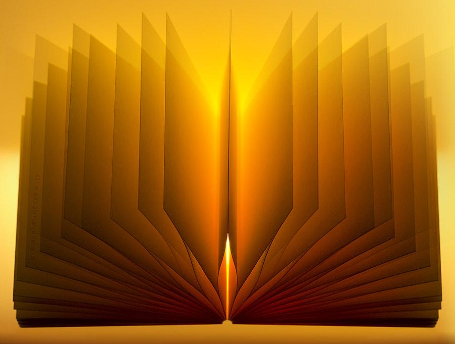 a little light reading