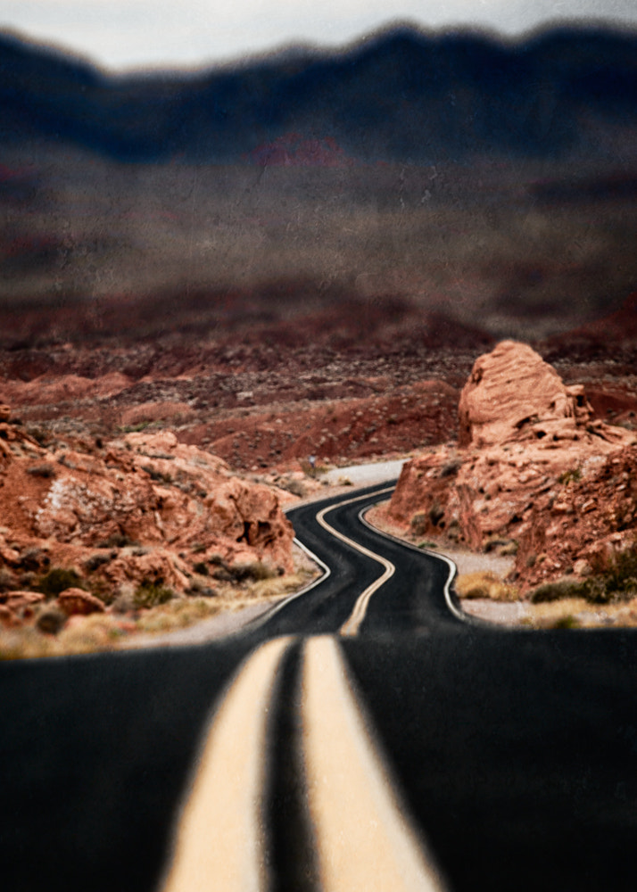 Photograph The Long and Winding Road by Paul Bartell on 500px