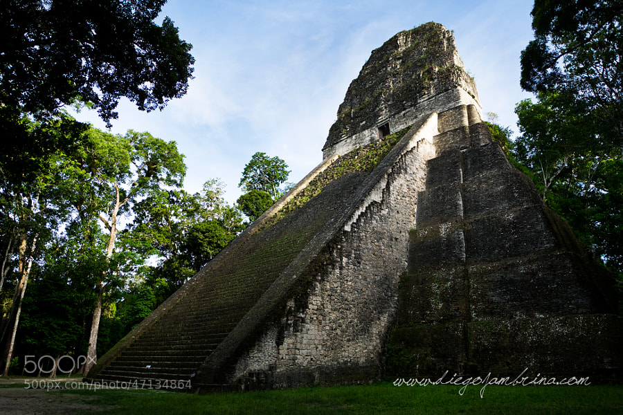 Templo maya en Tikal by Diego Jambrina on 500px.com