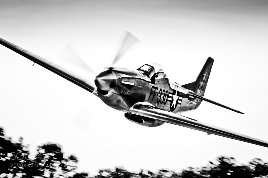 "P-51D Mustang ""Sarah Jean"" low & fast over the grass strip at Sky Country Lodge."
