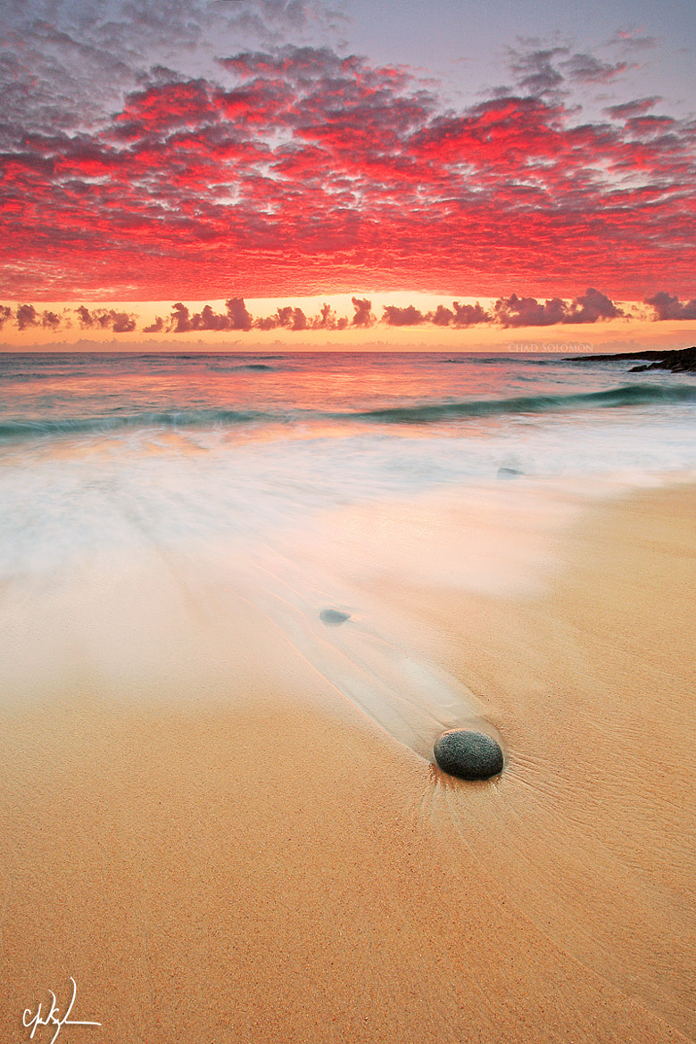 Photograph Red by Chad Solomon on 500px