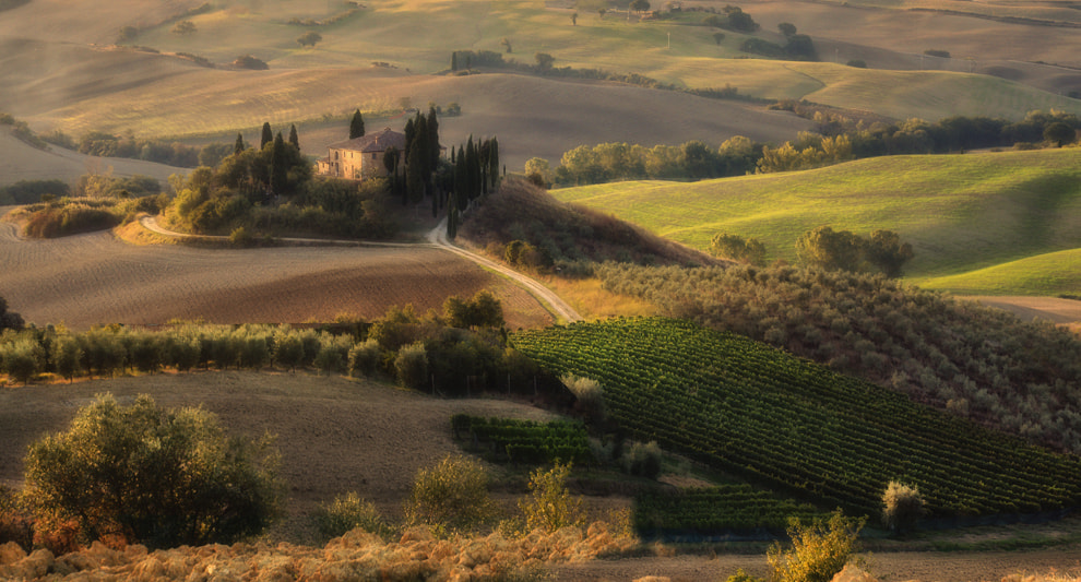 Photograph Val d'Orcia atmosphere by Tiberio Taverni on 500px
