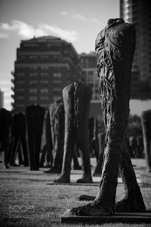 Photograph Agora by Jonathan Robson on 500px