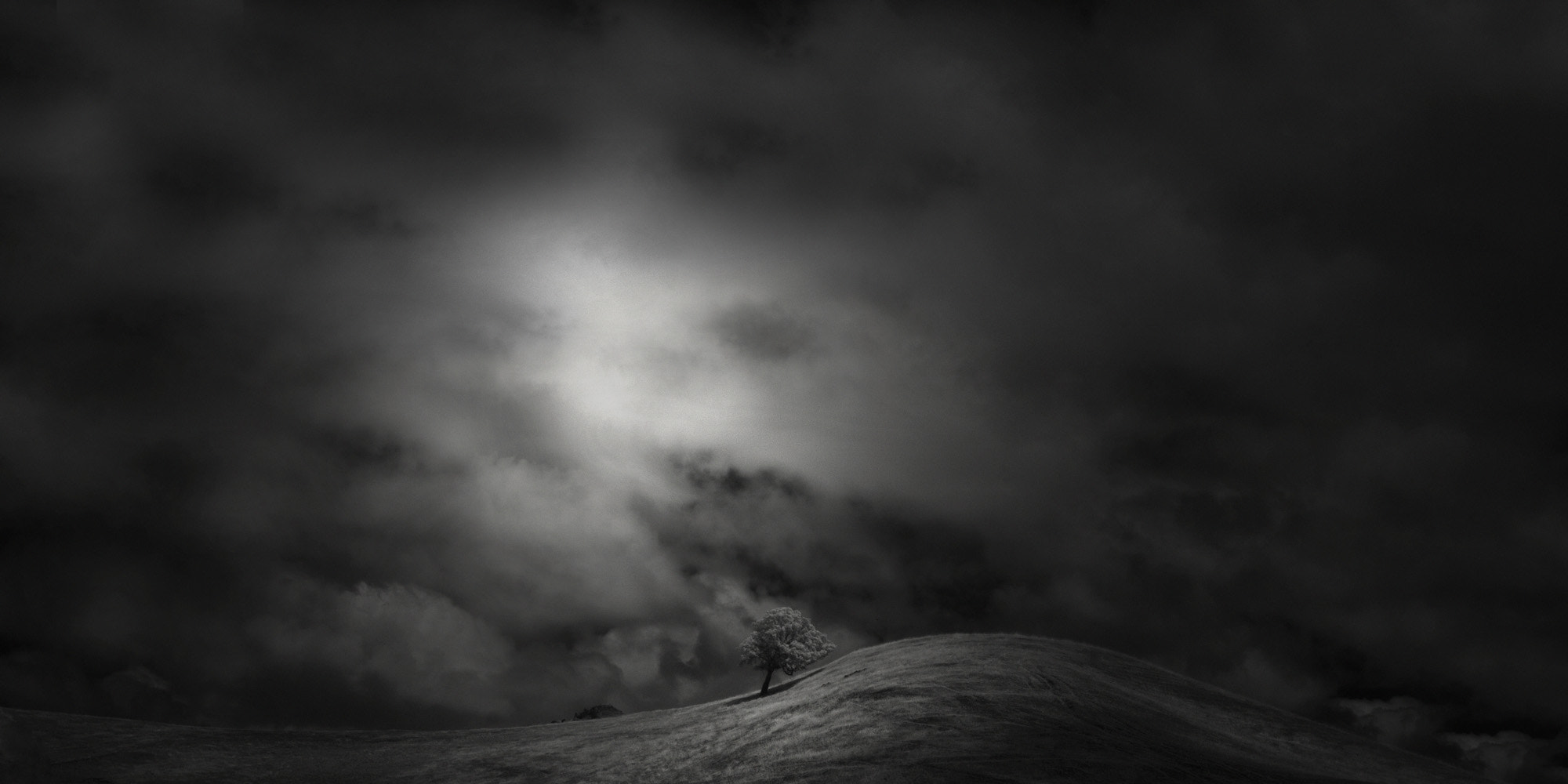 Photograph tree & hill by Nathan Wirth on 500px