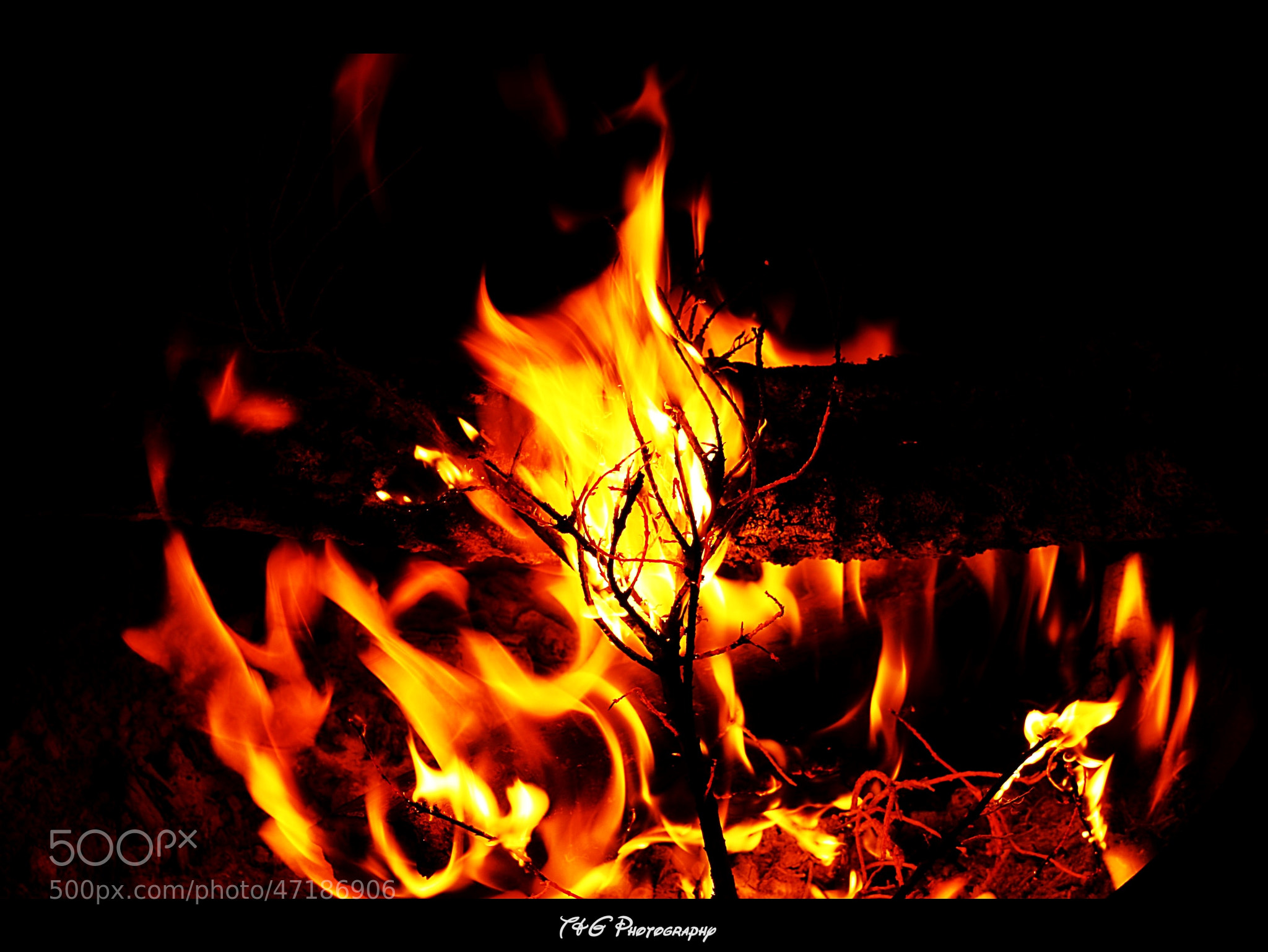 Photograph Fire pit by T&G Photography  on 500px