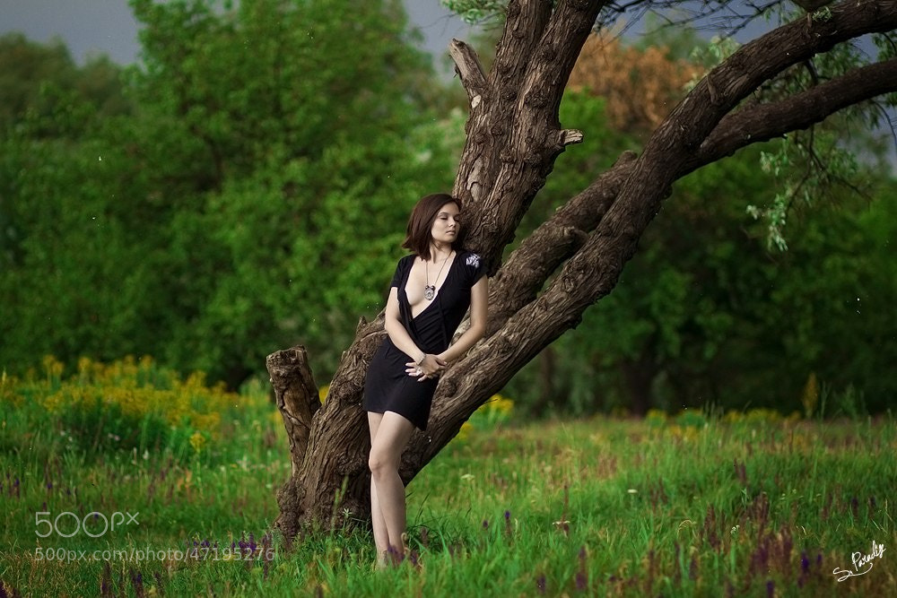 Photograph Leas Sandata by Andrey Stepanischev on 500px