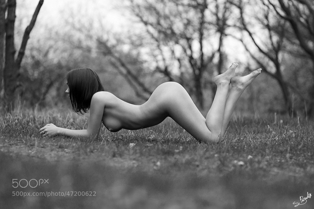 Photograph Lines by Andrey Stepanischev on 500px
