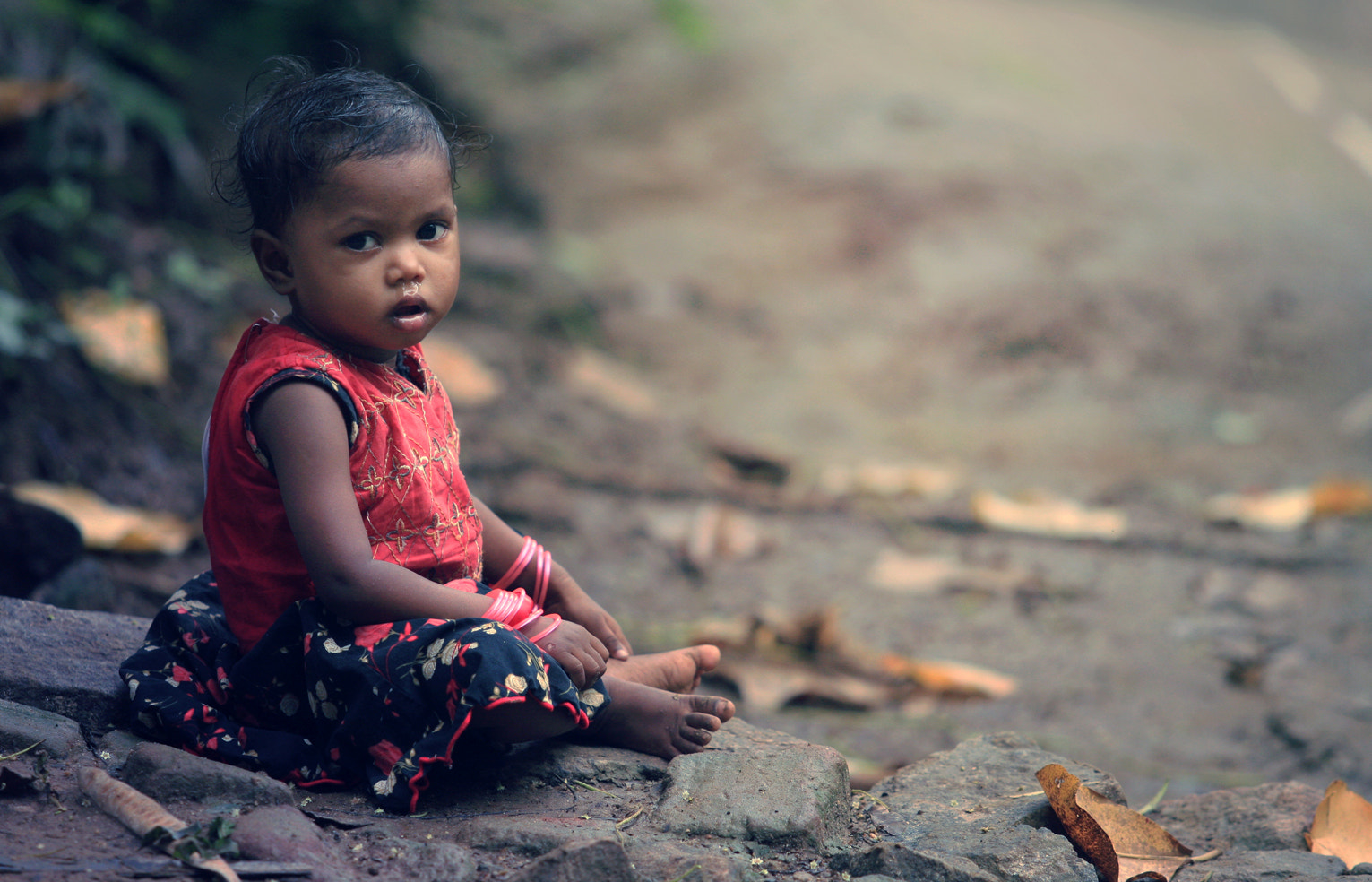 Photograph Untitled by Shahul Kollengode on 500px