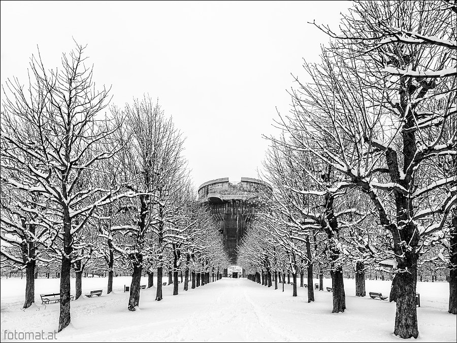 Augarten in Winter