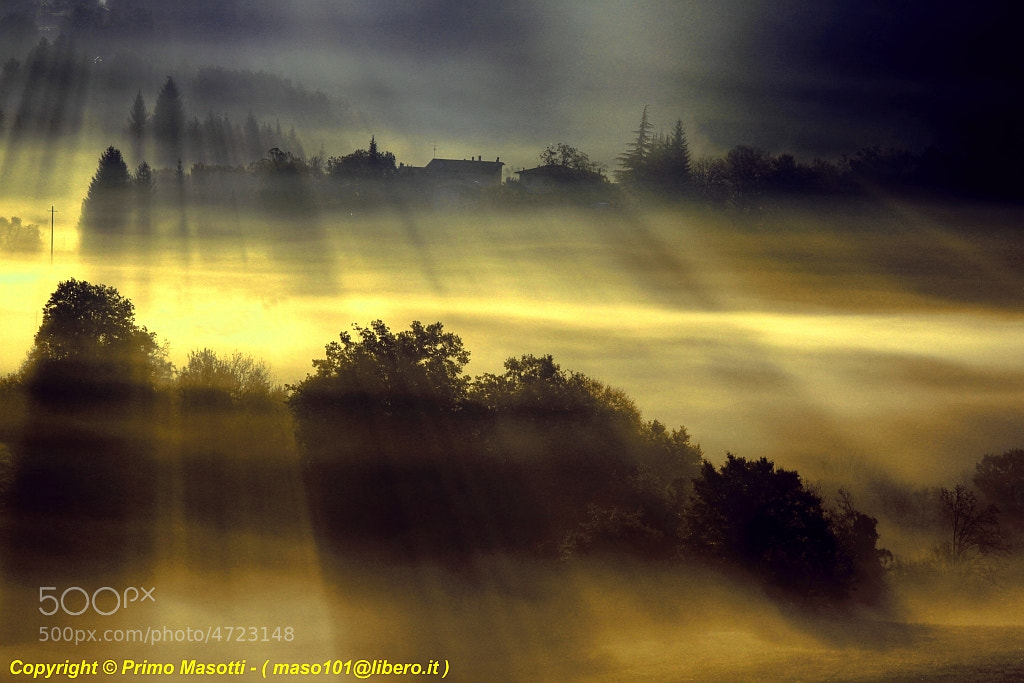 Photograph .. in the right place right time (missano zocca  modena italy)_7819_DVD 14 by primo masotti on 500px