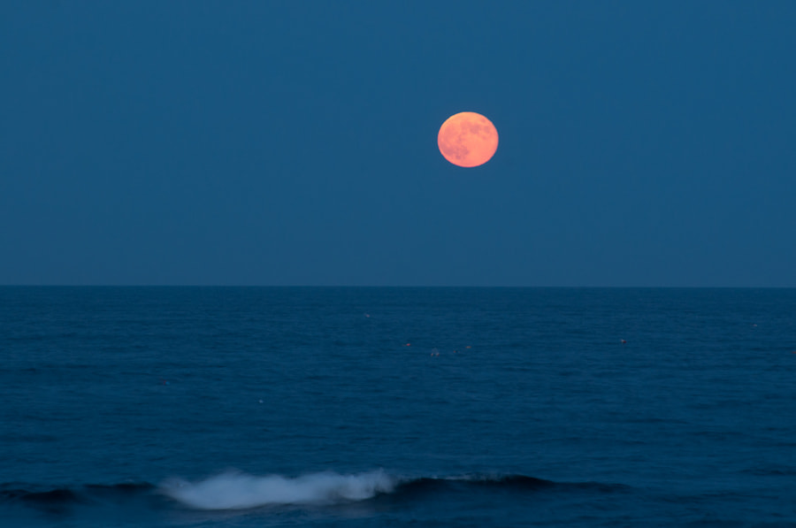 Photograph Moonrise over Cape Ann by Paul Mozell on 500px