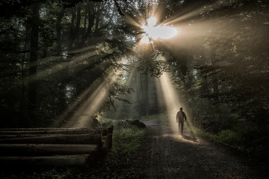 Photograph Ray Of Light by Roland Guth on 500px