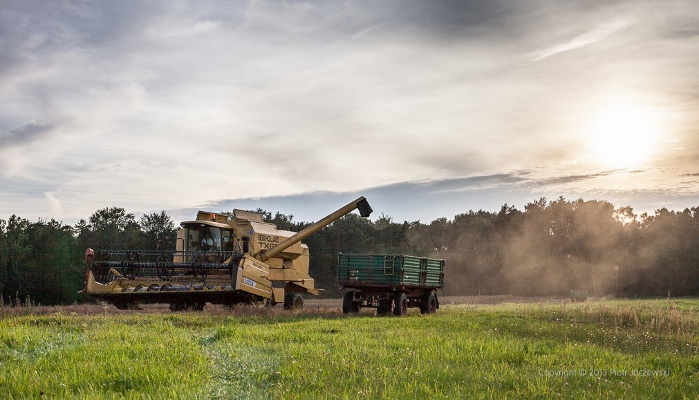 Photograph Harvest by Peter Jot on 500px