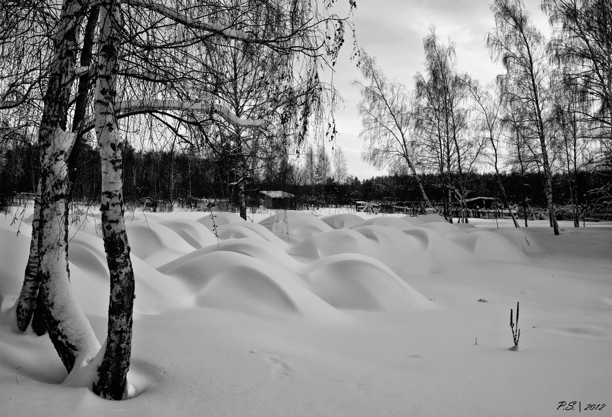 Photograph Snow dunes by Sergey Pekker on 500px