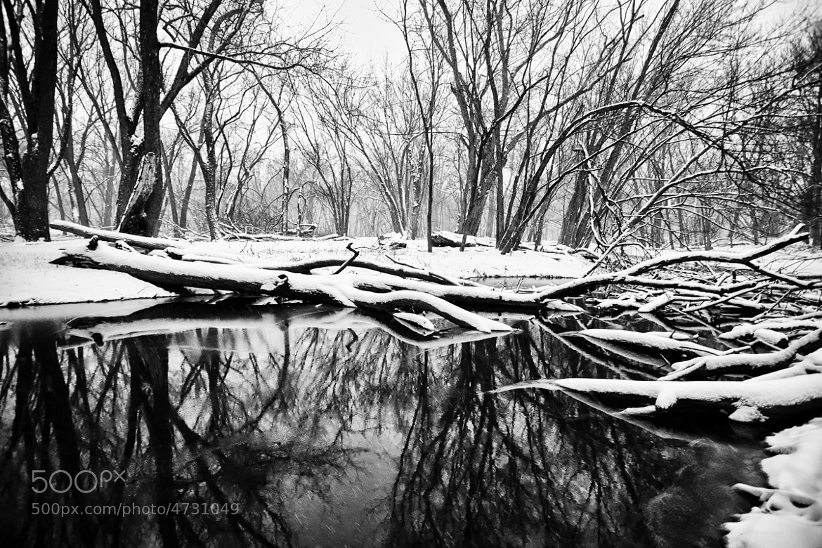 Photograph Winter Reflections by Shane Lund on 500px